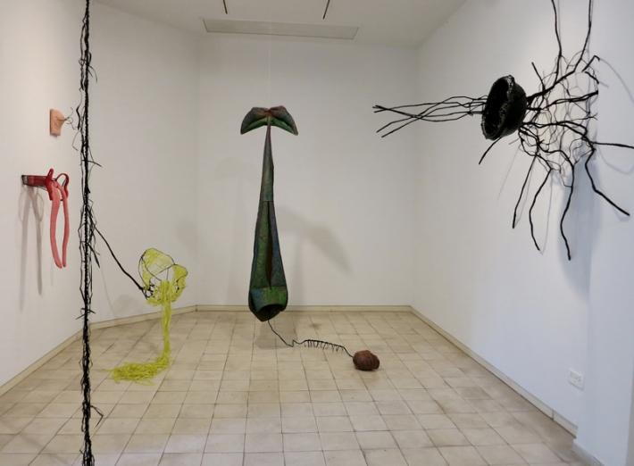 טל-שושן-בוץ-בעיניים-2015-תערוכת-יחיד-בגלריה-שלוש-תל-אביב-מראה-הצבה-3