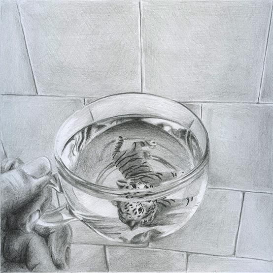 tiger for tea, graphite on paper, 20X20 cm, 2015